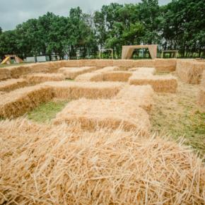 Екскурсія в кукурудзяний лабіринт