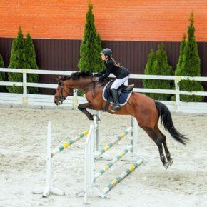 Буки + кінно-спортивний комплекс «Parade Allure» в Жашкові
